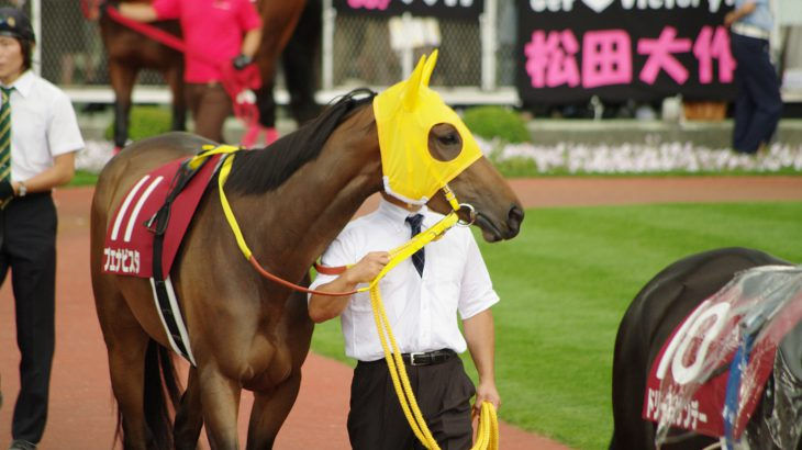 画面の向こうで競馬が行われている。