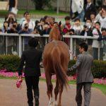 重賞勝ち馬評価 東京優駿(日本ダービー) 目黒記念