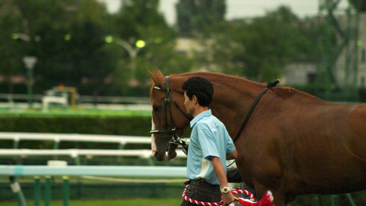 注目馬評価 ボーデン