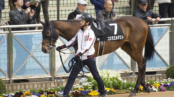 阪神牝馬S2021過去10年の傾向データ