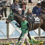 2020年3月29日(日)K理論競馬予想・中山版&WIN5