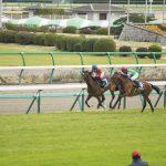 重賞勝ち馬評価 ダイヤモンドステークス 京都牝馬ステークス