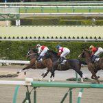 2020年8月29日(土)K理論競馬予想・札幌版