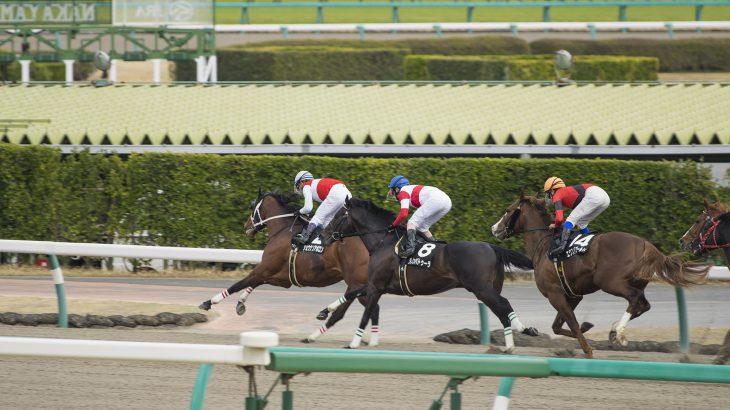 2020年8月8日(土)K理論競馬予想・札幌版
