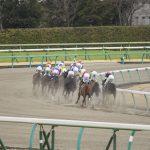 2020年2月8日(土)K理論競馬予想・東京版
