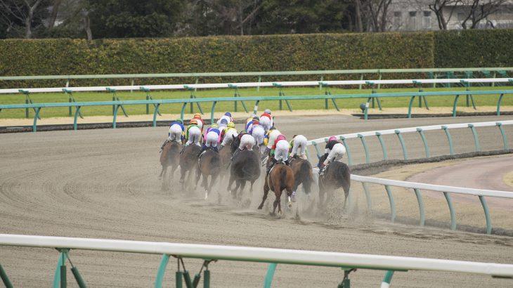 2020年8月1日(土)K理論競馬予想・札幌版